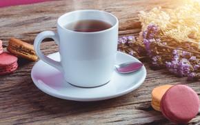 Picture cakes, pasta, Tea