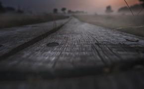 Picture macro, track, Board