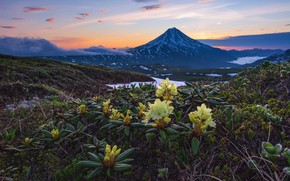 Picture clouds, landscape, nature, the volcano, Kamchatka, rhododendrons, Алексей Кретов, Вилючинская сопка