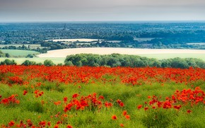 Picture England, West Dean, Chichester District