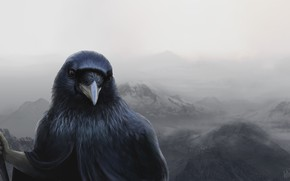 Picture Figure, Raven, Bird, Art, Art, Illustration, Raven, Hikers, Into The Bear, by Into The Bear