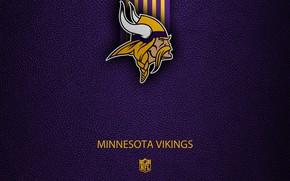 Picture wallpaper, sport, logo, NFL, Minnesota Vikings