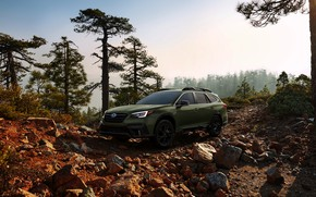 Picture trees, stones, Subaru, universal, Outback, AWD, 2020