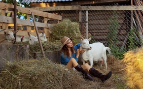 Picture girl, legs, goat, the farm, Eugene Pyatnitskaya