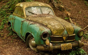 Picture forest, abandoned, rust, old, car
