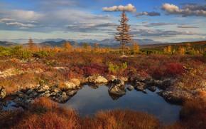 Picture autumn, landscape, mountains, nature, stones, vegetation, pond, Kolyma, Maxim Evdokimov