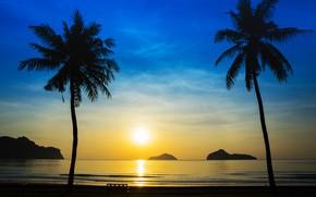 Picture sea, beach, summer, sunset, palm trees, shore, silhouette, summer, beach, sea, sunset, seascape, beautiful, paradise, …