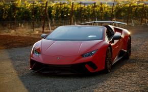 Picture the evening, Lamborghini, supercar, Spyder, 2018, Performante, Huracan, North America version