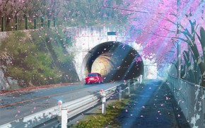 Picture road, auto, the tunnel, flowering