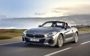 Picture grey, shore, BMW, Roadster, BMW Z4, M40i, Z4, 2019, G29