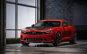 Picture Chevrolet, Camaro, Chevrolet Camaro, RS 1LE, Chevrolet Camaro RS 1LE 2018