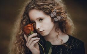 Picture rose, portrait, girl