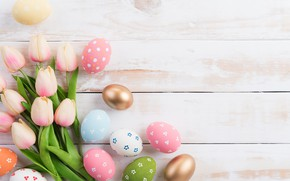 Picture eggs, Easter, tulips, composition, egg