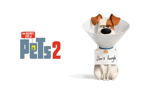 Picture the inscription, cartoon, dog, white background, poster, character, Max, The secret life of Pets 2, …