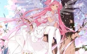 Picture Girl, fantasy, mahou shoujo madoka magica, pink hair