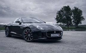 Picture Jaguar, Auto, Machine, F-Type, Jaguar F-Type, Transport & Vehicles, by Rodion Yushmanov, Rodion Yushmanov