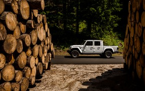 Picture white, SUV, pickup, Gladiator, logs, 4x4, Jeep, Rubicon, 2019