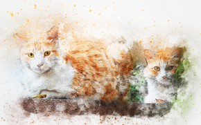 Picture cats, background, watercolor, art