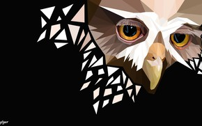 Picture owl, sad face, polygon graphics
