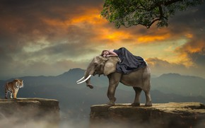 Picture girl, sunset, mountains, tiger, rendering, open, tree, rocks, elephant, art, abyss, photoart