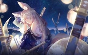 Picture girl, night, sword, sleeping, ears