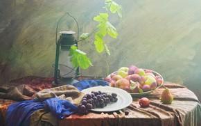Picture leaves, apples, grapes, fruit, still life, plum, pear, items, vine, composition, kerosene lamp
