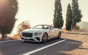 Picture Bentley, Continental, Bentley continental gt