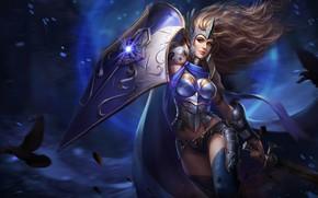 Picture dark, girl, sword, fantasy, armor, weapon, Warrior, blue eyes, birds, digital art, artwork, shield, fantasy …