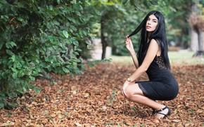 Picture sexy, pose, foliage, hair, dress, beauty, bokeh, Martina