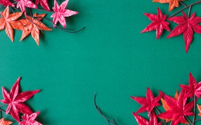 Picture autumn, leaves, background, red, maple, background, autumn, leaves, maple