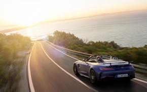 Picture machine, asphalt, water, the sun, Mercedes-Benz, speed, Roadster, GT R, Mercedes-AMG