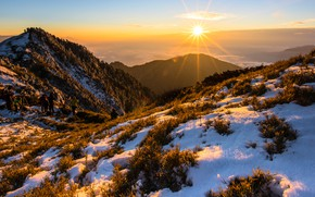 Picture winter, snow, mountains, people, vegetation, the slopes, Thailand, photographers, tourists
