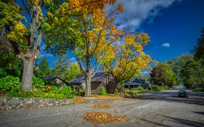 Wallpaper road, autumn, the sky, leaves, the sun, clouds, trees, machine, street, home, USA, yellow, Michigan, ...