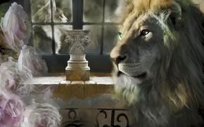 Picture cat, collage, roses, Leo, window