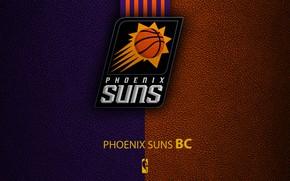 Picture wallpaper, sport, logo, basketball, NBA, Phoenix Suns
