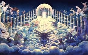 Picture the way, anime, art, columns, pokemon, pokemon