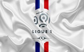 Picture wallpaper, sport, logo, France, football, Ligue 1