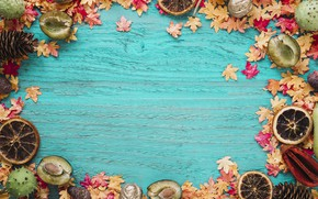 Picture autumn, leaves, background, tree, oranges, colorful, fruit, plum, wood, background, autumn, leaves, autumn, maple