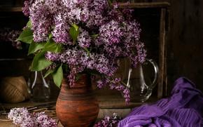 Picture flowers, bouquet, lilac