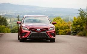 Picture asphalt, red, Toyota, sedan, 2018, Camry, SE Hybrid