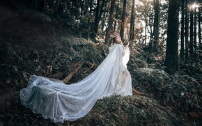 Picture forest, look, girl, light, trees, flowers, nature, pose, style, thickets, white, branch, dress, outfit, image, …