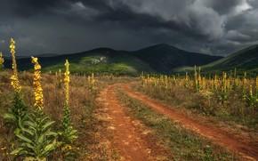 Picture road, the storm, landscape, clouds, nature, hills, Crimea