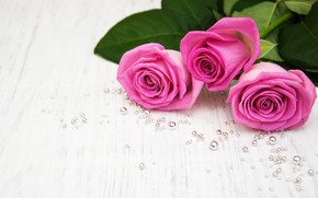 Picture white, table, background, roses, bouquet, pink, pink, beads, roses, bouguet, Olena Rudo