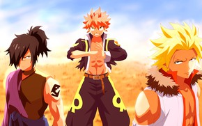 Picture dragons, guys, Fairy Tail, Fairy tail