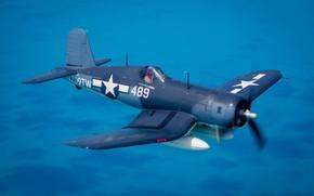 Picture Fighter, Pilot, Chance Vought F4U Corsair, The Second World War, F4U Corsair, US NAVY, PTB