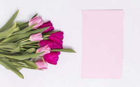 Picture bouquet, tulips, pink