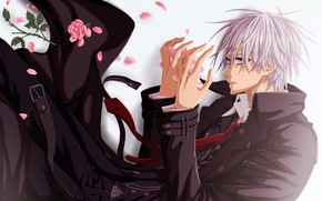 Picture petals, tie, guy, art, sad, vampire knight, knight-vampire, pink rose, black cloak, matsuri hino, zero …
