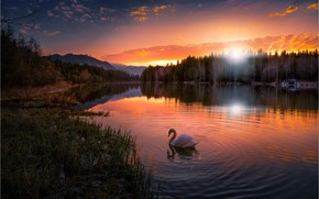 Picture forest, the sky, sunset, mountains, nature, lake, reflection, Austria, Swan, Friedrich Beren