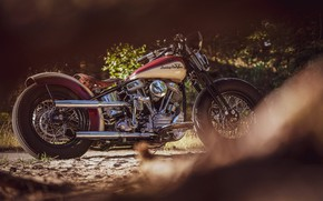 Picture Custom, Motorcycle, Bobber, Thunderbike, By Thunderbike, Uncle Pan