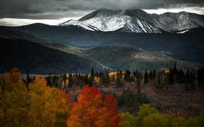Picture autumn, forest, snow, trees, mountains, hills, the slopes, tops, view, snow